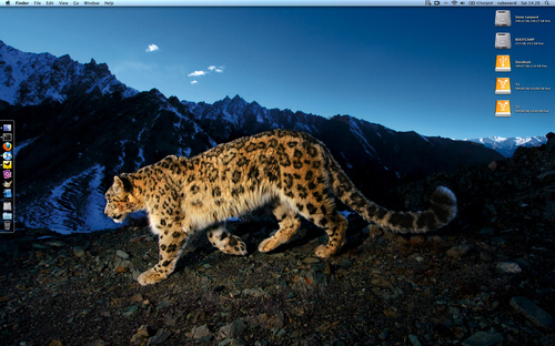 Taming the snow leopards