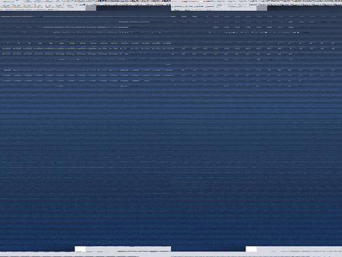 Fedora 11 screenshot showing garbled Xorg output