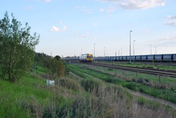 Dwarfed Adelaide suburban train