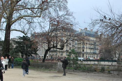 Cold Paris afternoon