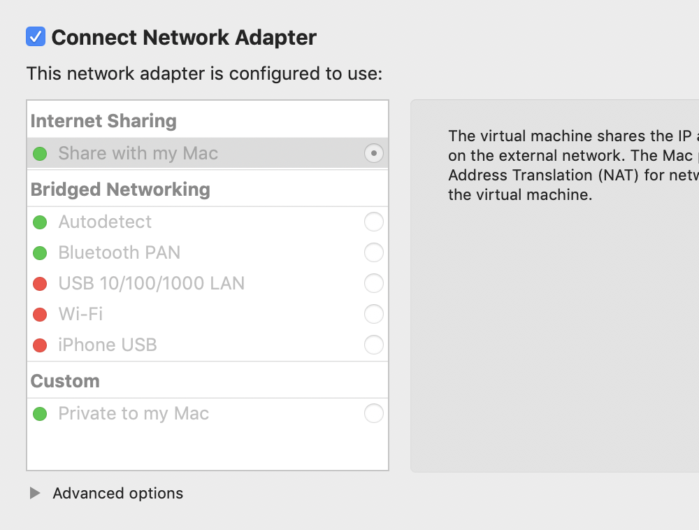 Screenshot showing greyed out options for the Network Adaptor.