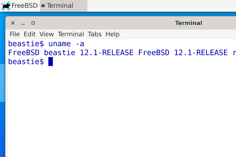 Screenshot showing a Terminal prompt with uname in FreeBSD 12.1