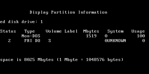 Display Partition Information screen on fdisk, showing an 'UNKNOWN' partition type and tab-shifted text that's all over the place.