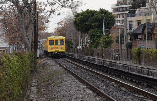 Train flanked by trees and a side-street in suburban Buenos Aires