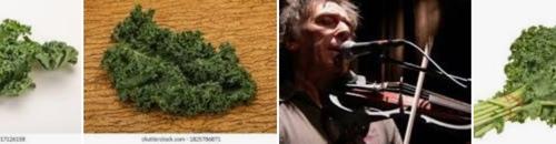 Photo result showing kale, kale, JJ Cale, kale...