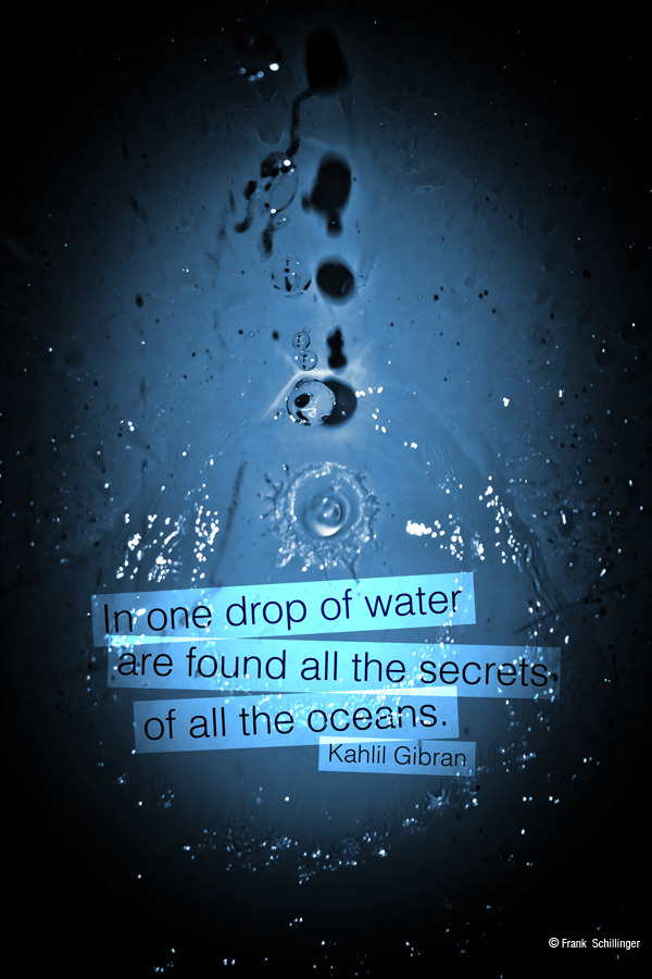 In one drop of water are found all the secrets of all the oceans ~ Kahlil Gibran