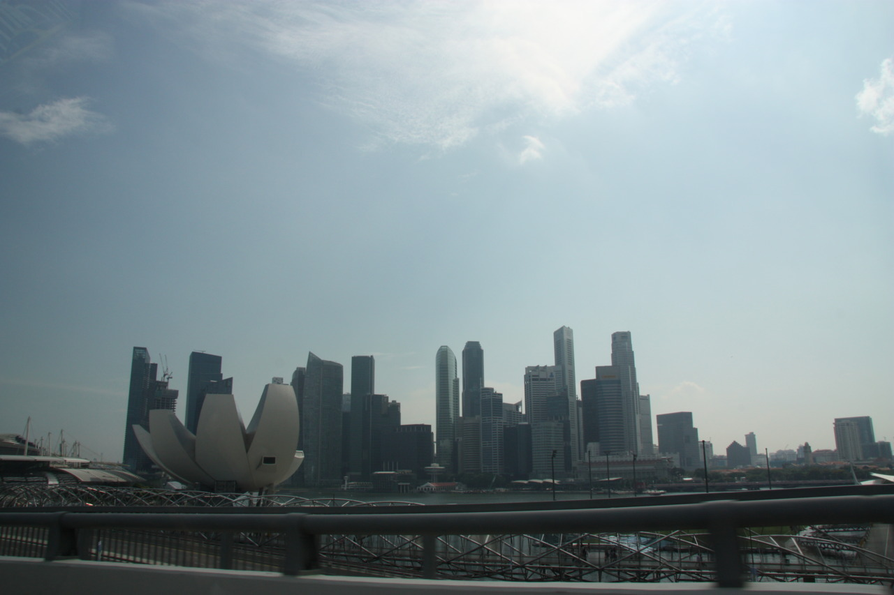 Photo of the Singapore skyline with the ArtSciecne museum