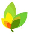 9rules leaf logo