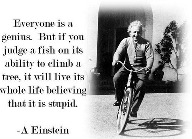 Everyone is a genius. But if you judge a fish on its ability to climb a tree, it will life its whole life believing that it is stupid