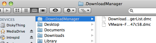 The .DownloadManager folder