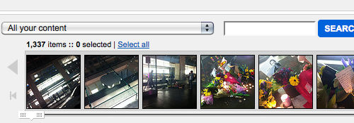 1337 uploads on my Flickr