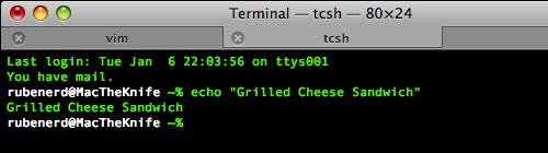 Mac OS X Leopard Terminal.app