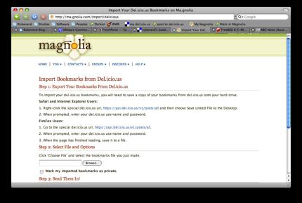 The Magnolia import screen