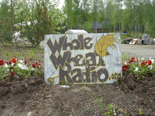 Whole Wheat Radio